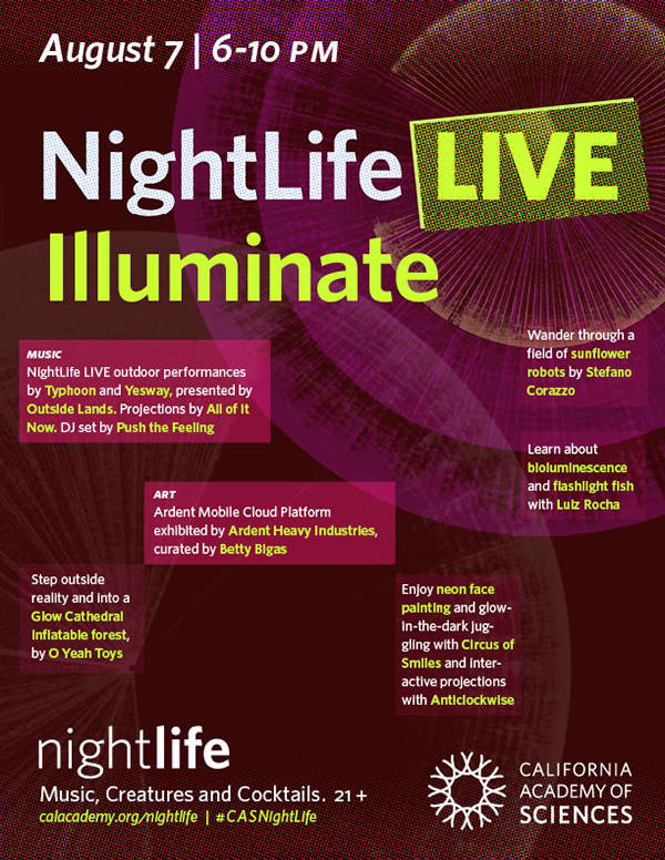 CODAME @ NightLife LIVE Illuminate